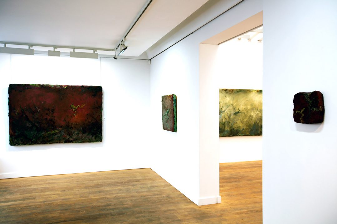 photo-yann-fravalo-riopelle-galerie-nicolas-deman-paris-exposition-peintures-anne-manoli-2016