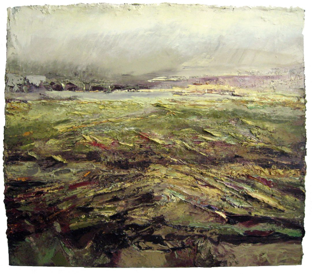 anne-manoli-peinture-2008-huile-sur-toile-152cmx172cm-terre-d-eau-collection-particuliere