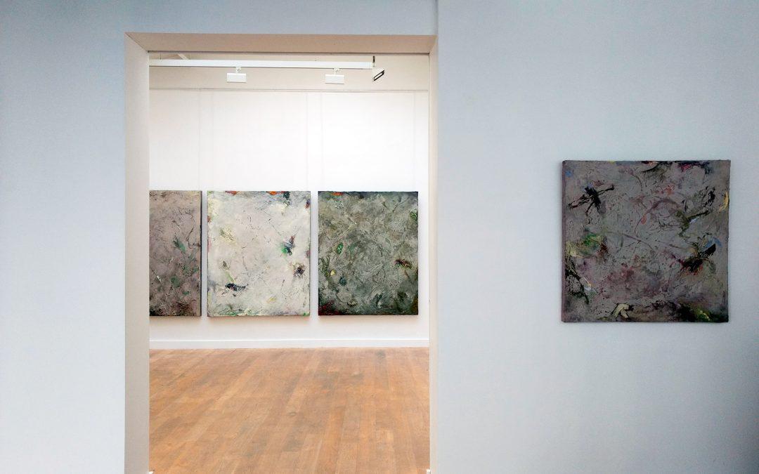 Exposition Les Moires Galerie Nicolas Deman Paris
